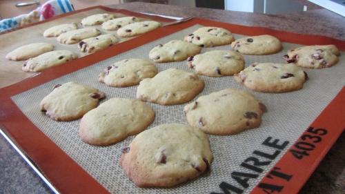2014-02-27 cookies cranberries (24).JPG