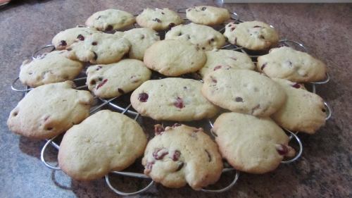 2014-02-27 cookies cranberries (26).JPG