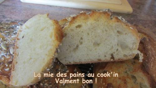 2014-06-25 pains sans pétrissage (21) titre.jpg