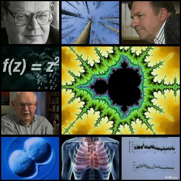 Fractales_a_la_recherche_de_la_dimension_cachee.jpg