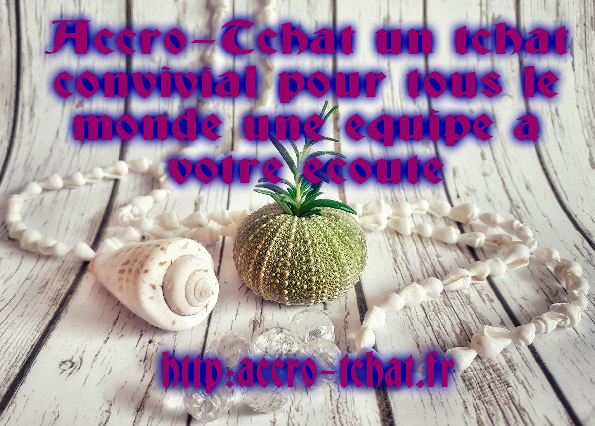 pizap.com15267353800301.jpg