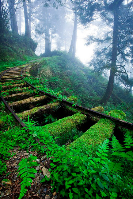 Des rails érodés dans les montagnes de Taïwan..png