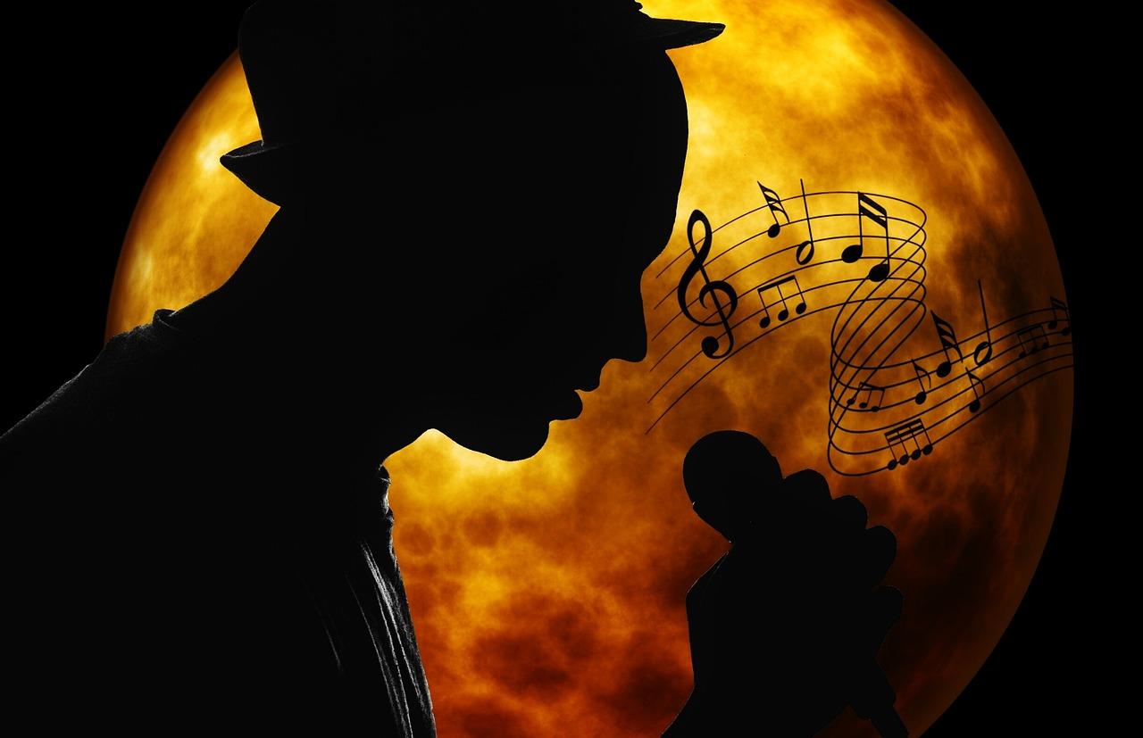 musician-2055803_1280.jpg