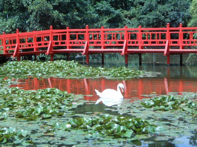 Parc floral saint cry en talmonais Vendée Photo perso