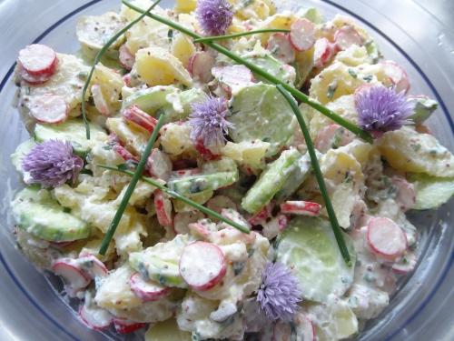 Salade fraîche.JPG