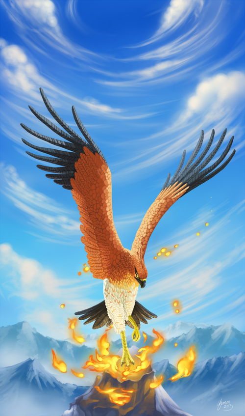 talonflame_by_shadeofshinon-d68x0ru.png