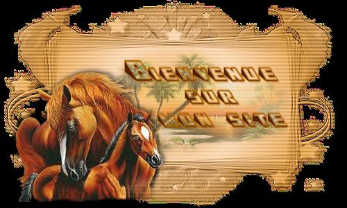 https://static.blog4ever.com/2013/02/727680/bienv1.png