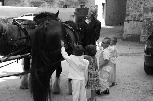 caleche mariage fany et enfants  carressant  jean boy.jpg