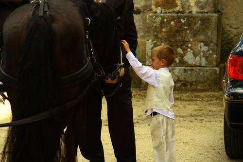 caleche mariage fany  et enfant carressant les chevaux.jpg