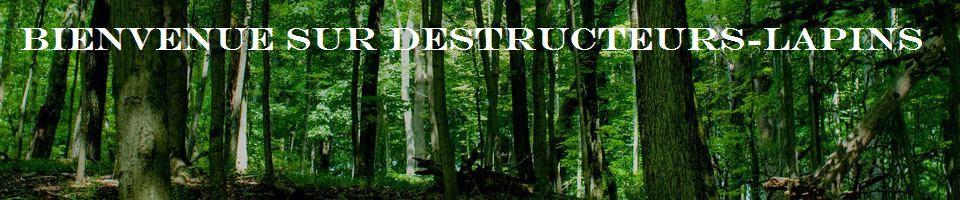 Destructeurs-Lapins
