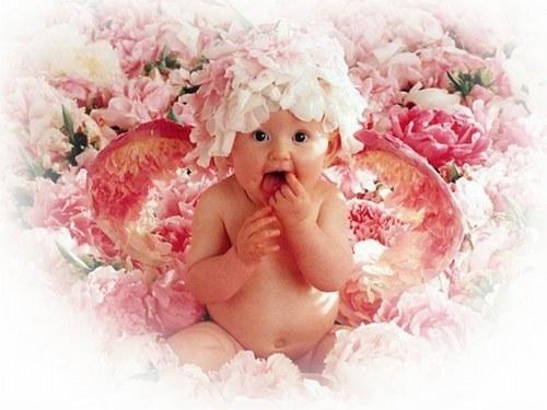 326658_F37AUZ75MIGGY2ECOCP6QD5GBTIGQO_anne-geddes-bebe-ange-dans-les-roses-2_H171919_L.jpg