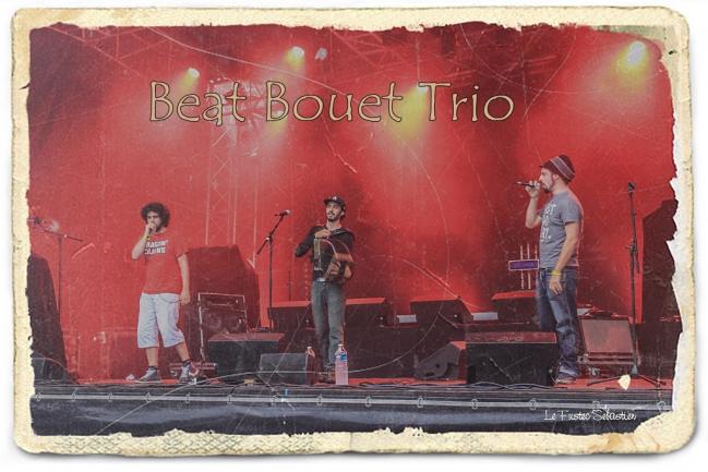 beat bouet trio auray 2015 (9).jpg