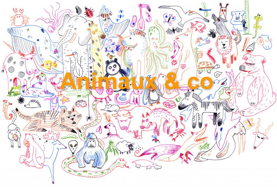 Animaux & co