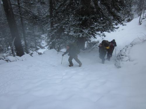 Vers le refuge Wallon à 1600 m on grimpe avec les crampons la neige s'épaissit - 18-01-2014.JPG