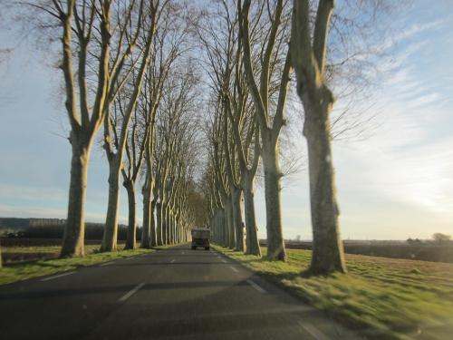 16-01-2014 - En allant vers Toulouse sur la route....JPG