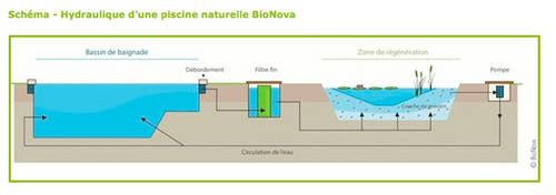 Principe Filtration Biologique Plantes Bionova.jpg