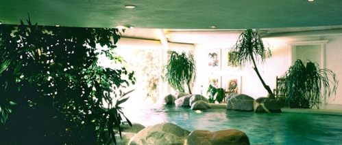 piscine intérieure paysagée copy.jpg