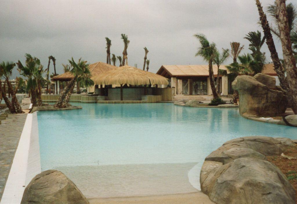 Des rochers dans la piscine mon plan de piscine for Piscine personnalisee