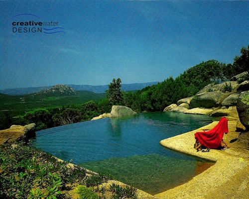 piscine naturelle et construction mon plan de piscine. Black Bedroom Furniture Sets. Home Design Ideas