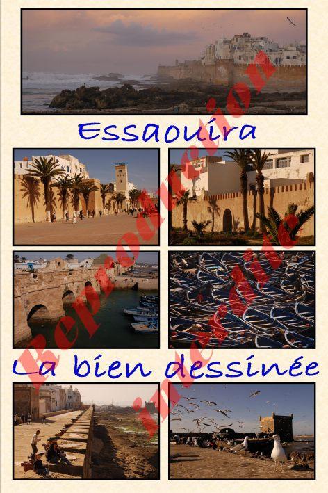 poster Essaouira la bien dessinée.jpg