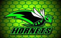 HornetsCameUS