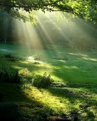 soleil brigitte.jpg