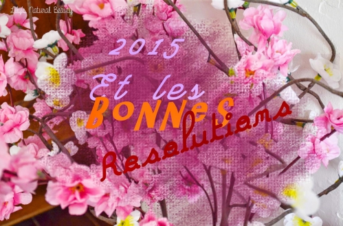 2015-bonnes-resolutions-L-LmfTOv.jpeg