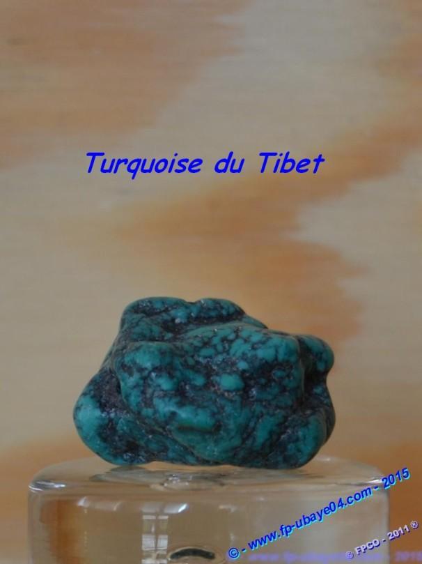 Turquoise du Tibet.JPG