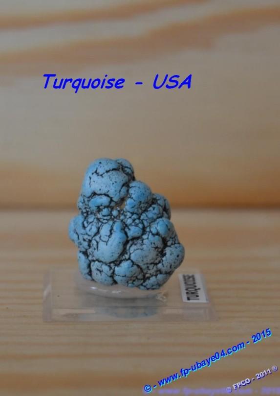 Turquoise - USA.JPG