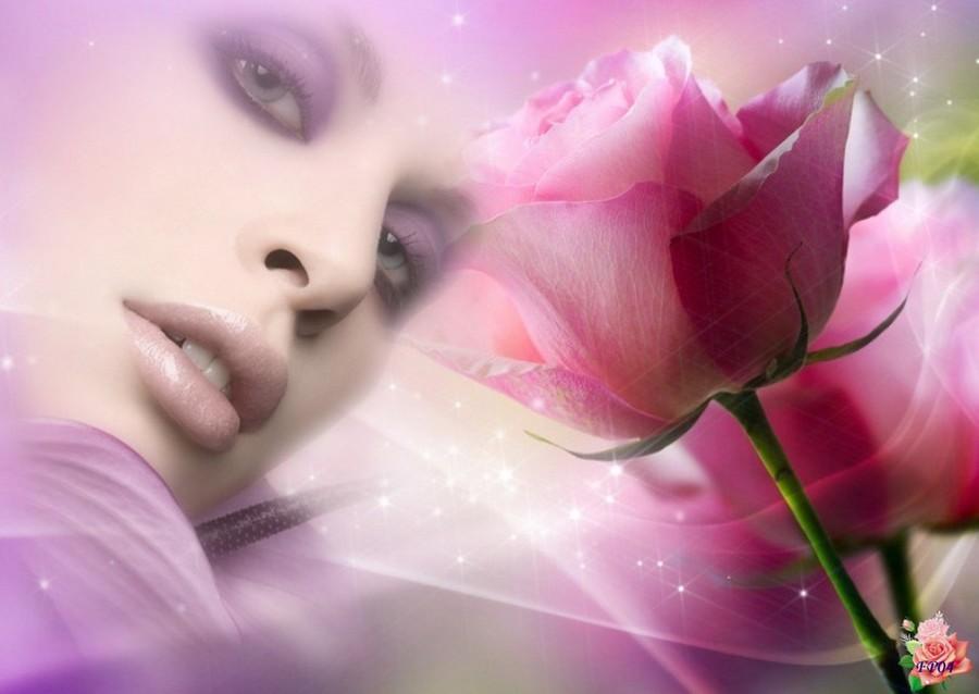 2016-05-29 - Roses6.jpg