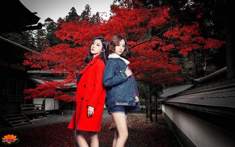 2015-10-17 - Japan house tree red leaves autumn1.jpg