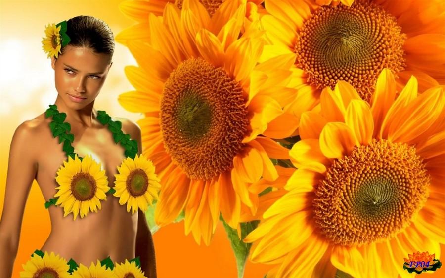 2015-12-19 - Golden-sunflowers (1).jpg