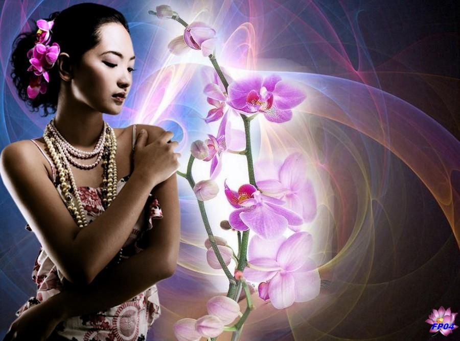 2016-09-04 - orchidee-vietnam.jpg