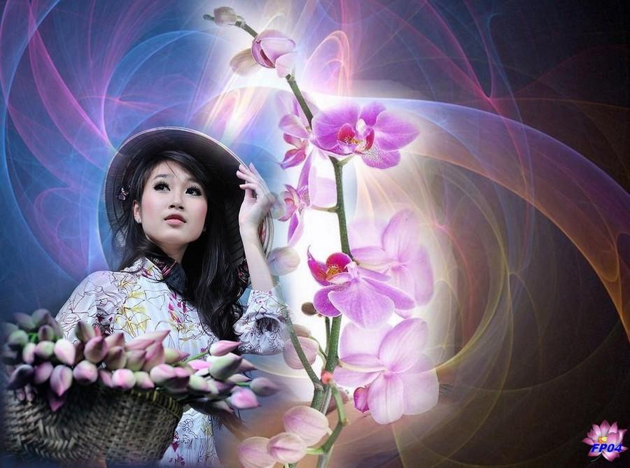 2016-09-04 - orchidee-vietnam1.jpg