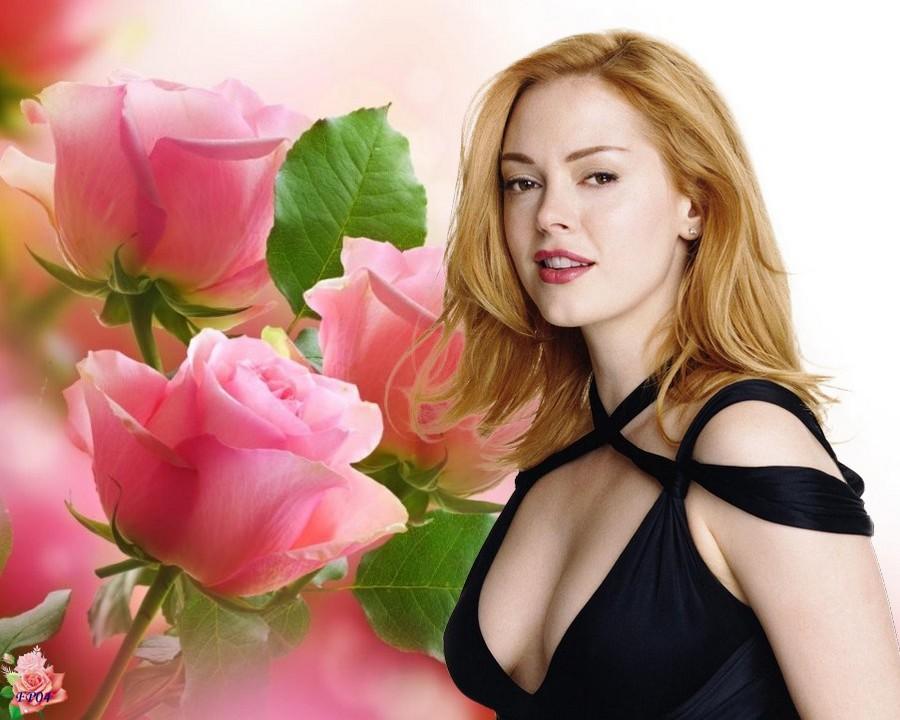 2016-09-15 - Roses2.jpg