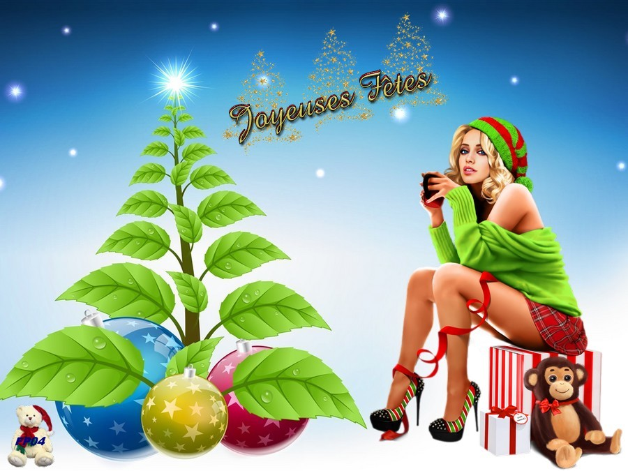 2017-11-25 - Christmas - New Year3.jpg