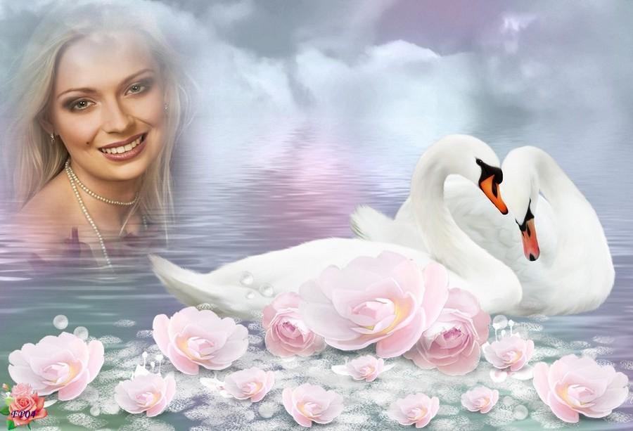 2016-09-04 - Lotus & cygnes7 Isabelle.jpg