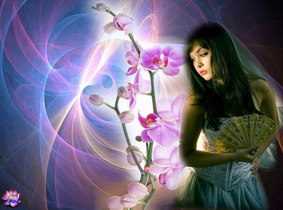 2016-09-04 - orchidee-vietnam3.jpg