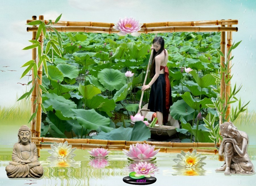 2016-09-04 - Vietnam (lotus) (10).jpg