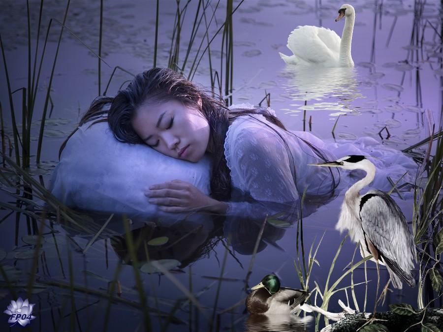 2017-10-18 - Asia - La femme dort dans le lac.jpg