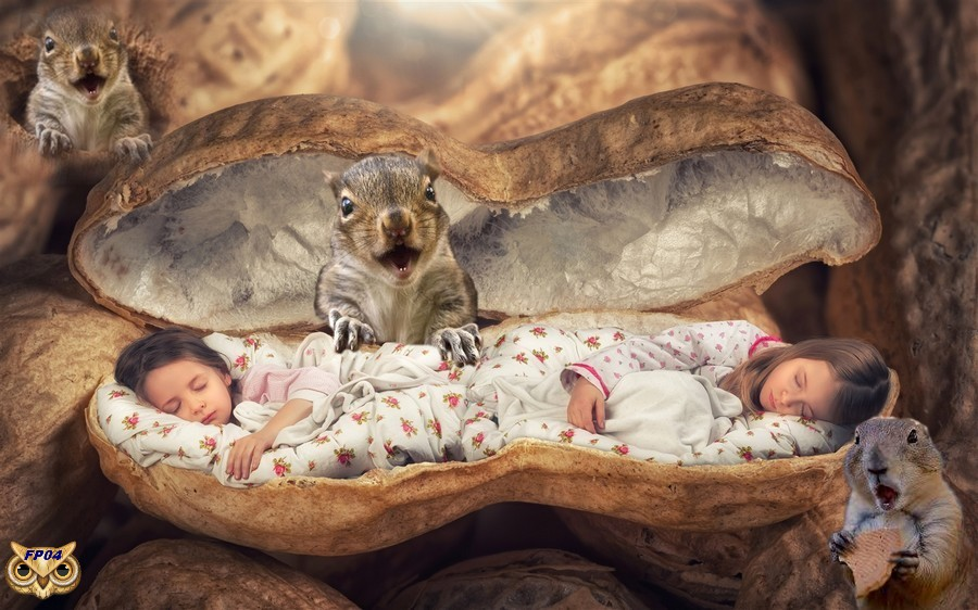 2018-01-03 - Little girls sleep in a peanuts.jpg