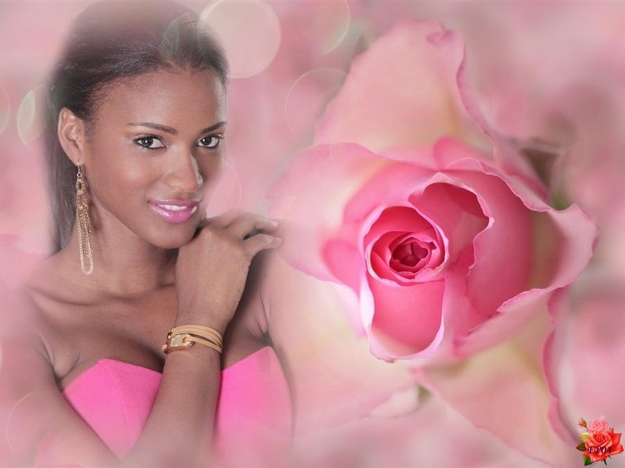 2017-07-08 - Pink-flower-rose Africa Leila.jpg