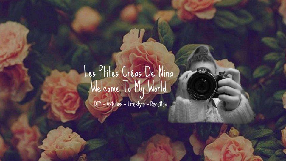 lesptitescreasdenina.blog4ever.com