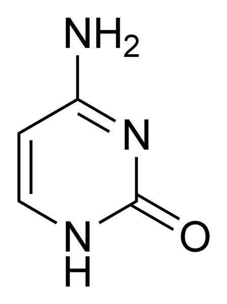 Cytosine copie.jpg
