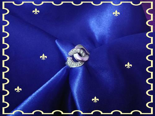 P6140052_fleurs de lys_bleu roi.jpg