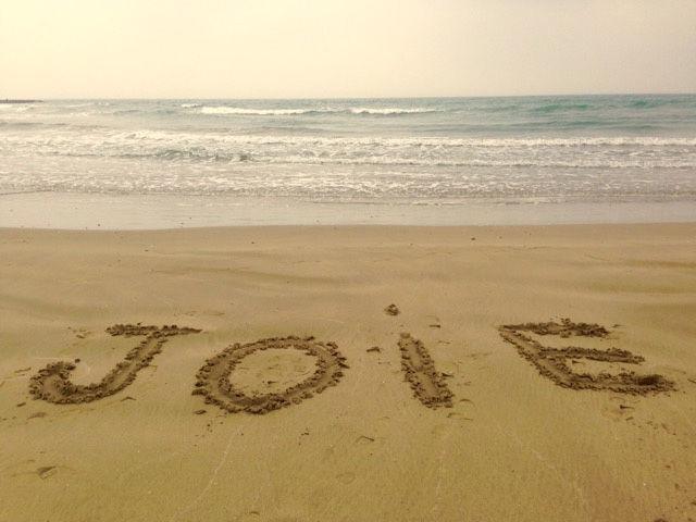 738_joie