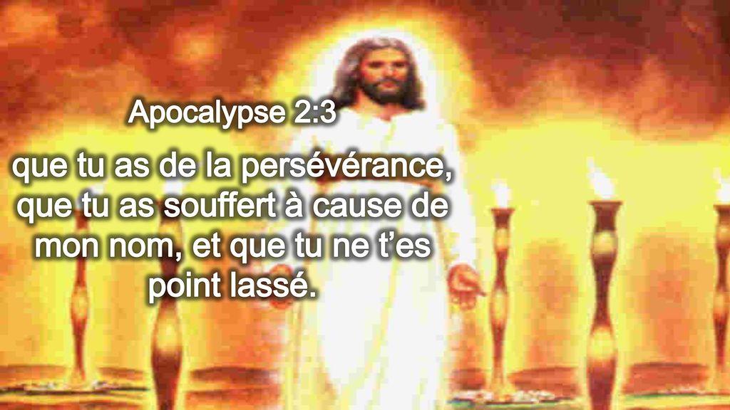 Apocalypse+2_3+que+tu+as+de+la+persévérance,+que+tu+as+souffert+à+cause+de+mon+nom,+et+que+tu+ne+t'es+point+lassé