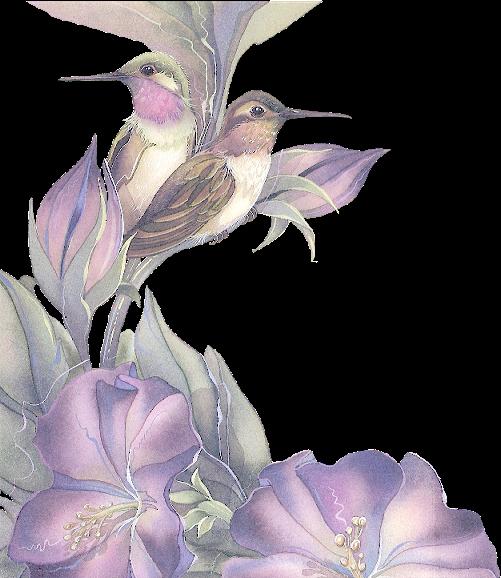 271653tubes_oiseaux_tiram__131_.png