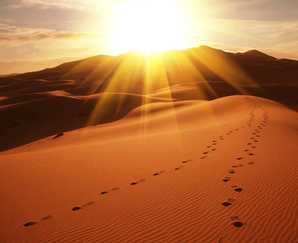 pas-dans-le-désert.jpg