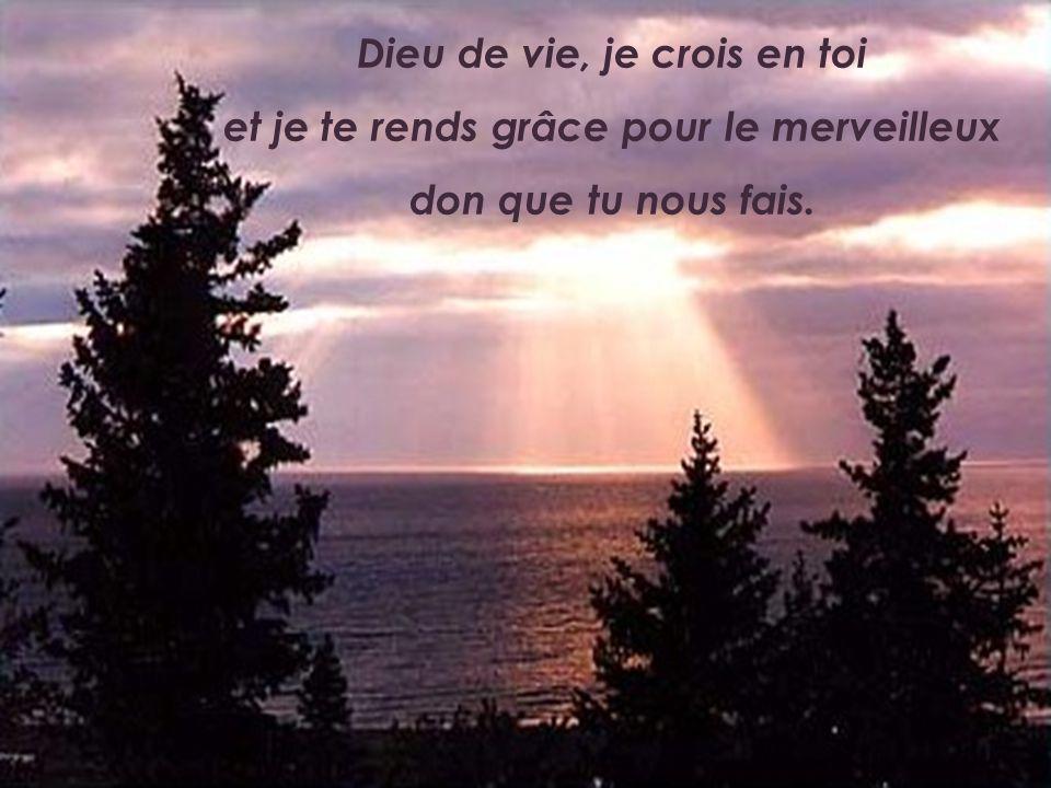 Dieu+de+vie+je+crois+en+toi+et+je+te+rends+grâce+pour+le+merveilleux.jpg